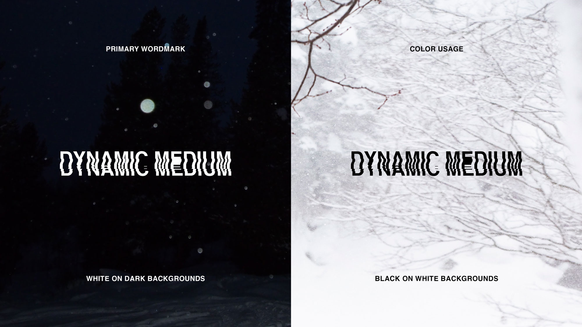 DynamicMedium-Branding-Style-Guide2
