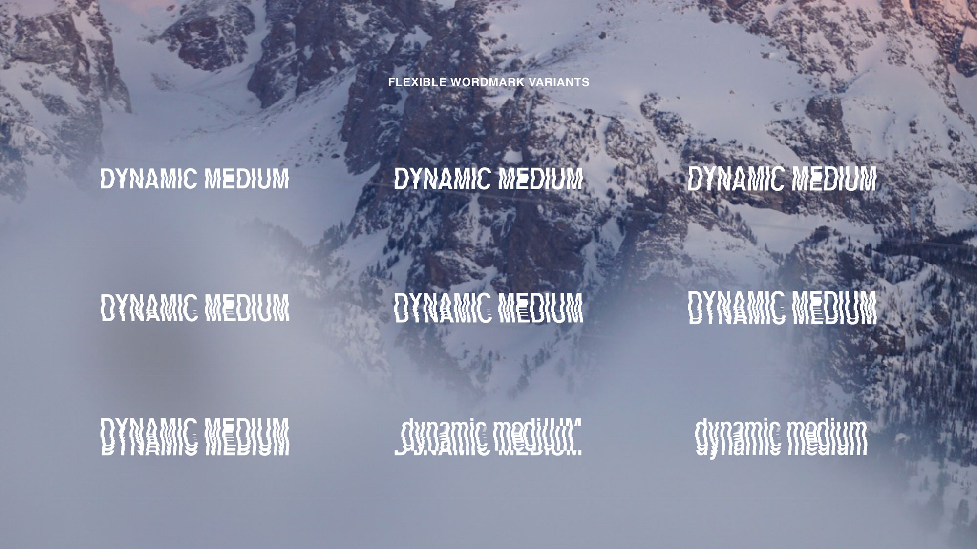 DynamicMedium-Branding-Style-Guide3